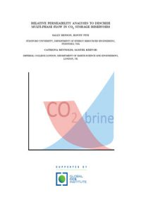 Relative permeability analysis to describe multi-phase flow in CO2 storage reservoirs