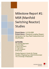MSR (manifold switching reactor) studies