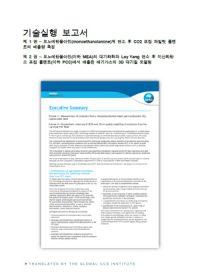 기술실행 보고서. 모노에탄올아민