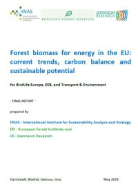 Forest biomass for energy in the EU: current trends, carbon balance and sustainable potential