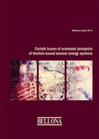 Certain issues of economic prospects of thorium-based nuclear energy systems