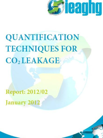 Quantification techniques for CO2 leakage