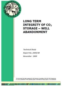 Long term integrity of CO2 storage: well abandonment