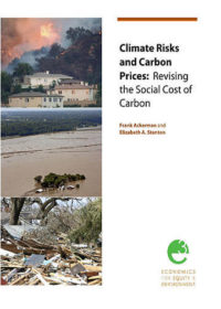 Climate risks and carbon prices: Revising the social costs of carbon
