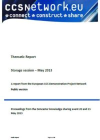Thematic report: Storage session – May 2013