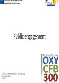 Public engagement: Compostilla project