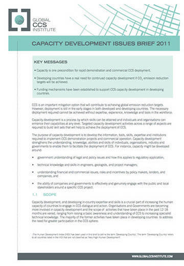 Capacity development issues brief 2011