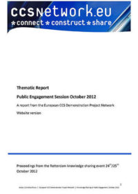 Thematic report: Public engagement session October 2012
