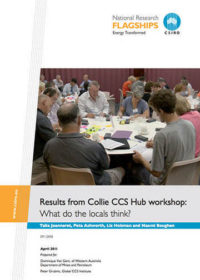 Results from Collie CCS Hub workshop: what do the locals think?