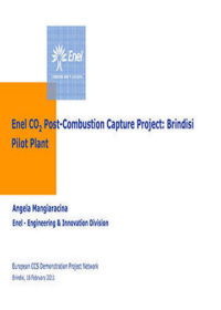 Enel CO2 post-combustion capture project: Brindisi pilot plant