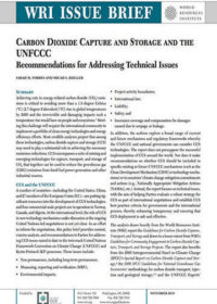 Carbon dioxide capture and storage and the UNFCCC: Recommendations for addressing technical issues