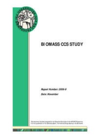 Biomass CCS study