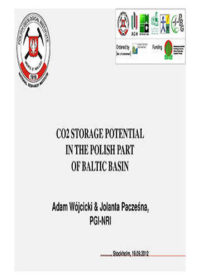CO2 storage potential in the Polish part of Baltic Basin