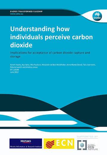Understanding how individuals perceive carbon dioxide: implications for acceptance of carbon dioxide capture and storage