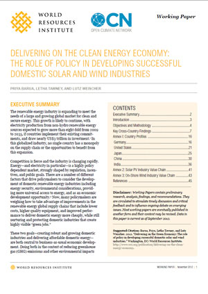 Delivering on the clean energy economy: The role of policy in developing sucessful domestic solar and wind industries