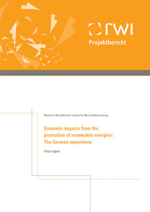 Economic impacts from the promotion of renewable energies: the German experience