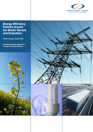 Energy efficiency policies around the world: review and evaluation