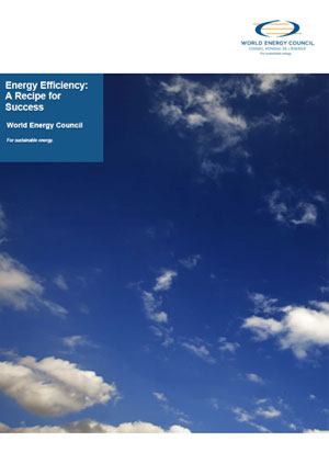 Energy efficiency: a recipe for success