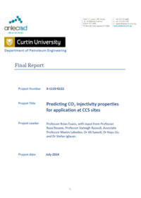 Predicting CO2 injectivity properties for application at CCS sites: final report