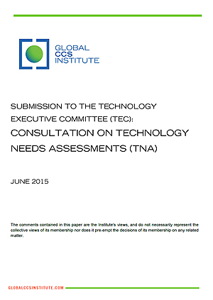 Submission to the Technology Executive Committee (TEC): consultation on technology needs assessments (TNA)
