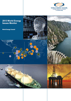 2013 world energy issues monitor
