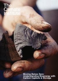 Moving below zero: understanding bioenergy with carbon capture & storage