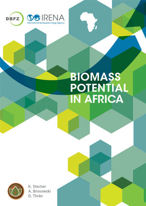 Biomass potential in Africa