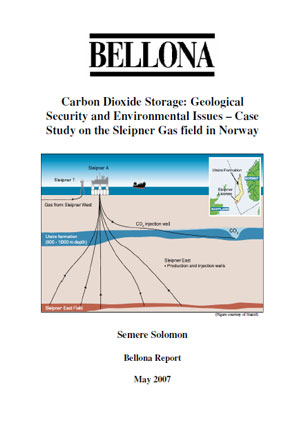 Carbon dioxide storage: geological security and environmental issues. Case study on the Sleipner gas field in Norway