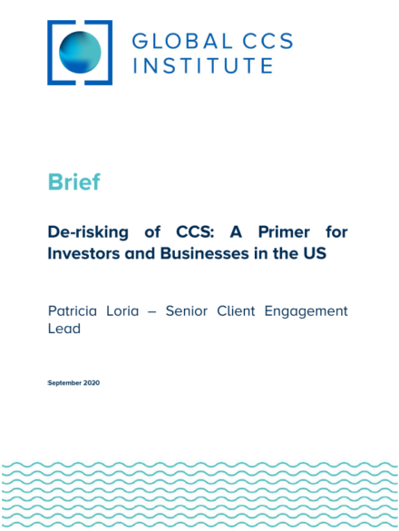 De-risking of CCS: A Primer for Investors and Businesses in the United States