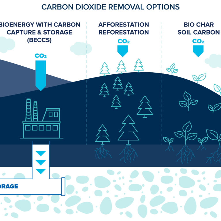 Carbon removal approaches